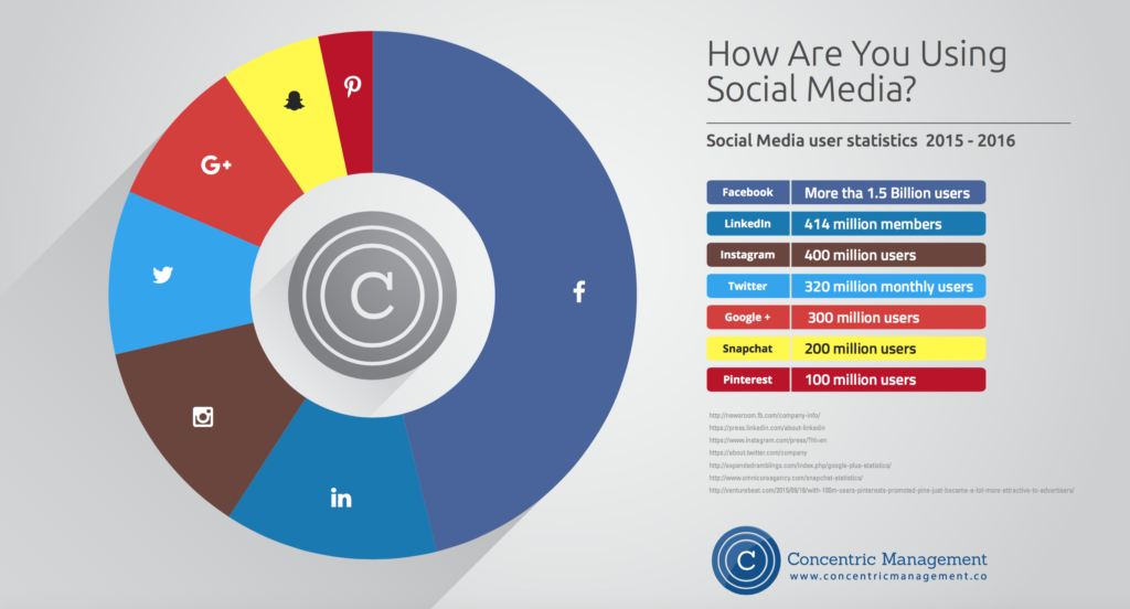 Social Media Users Infographic